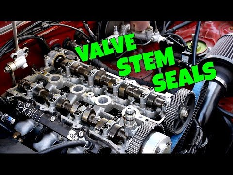 The ULTIMATE Guide To Replacing Valve Stem Seals The Easy Way