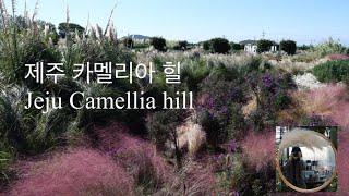 카멜리아 힐/camellia hill/동백수목원/제주도…