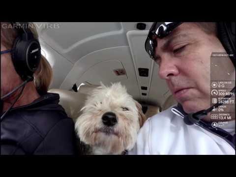 Piper Meridian flying from Oklahoma City to Gulf Shores with wife and dog