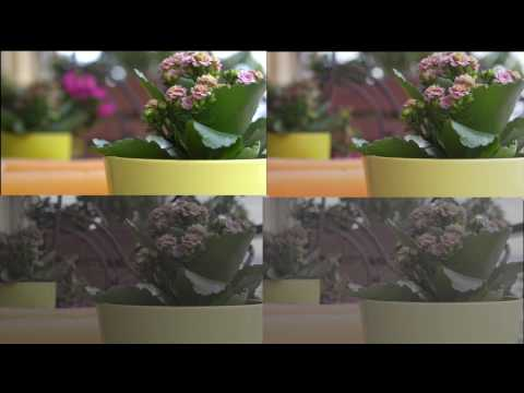 sony a6300, picture profile pp4,pp7,pp8!