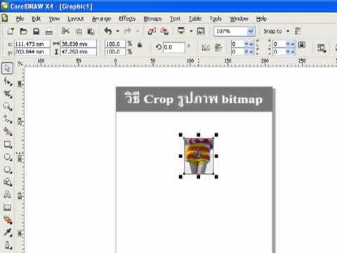 crop bitmap in corelDRAW