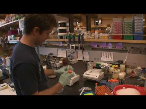 Decoding Synthetic Biology - KQED QUEST
