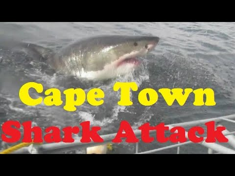 Cape Town 2017 | Complete Cape Town Travel Guide