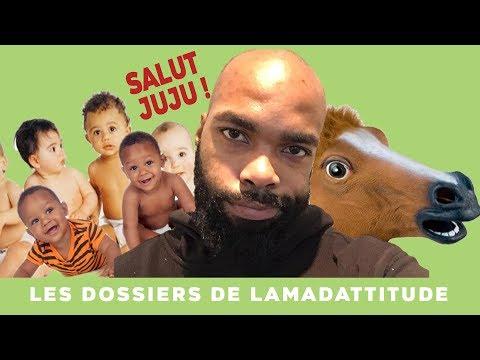 Les dossiers de Lamadattitude !!