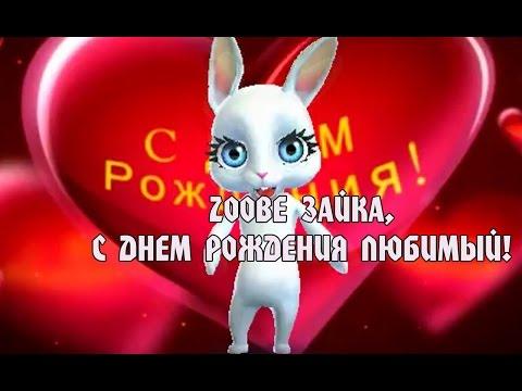 Zoobe Зайка, красивое поздравление в день рождения любимому! - Ржачные видео приколы