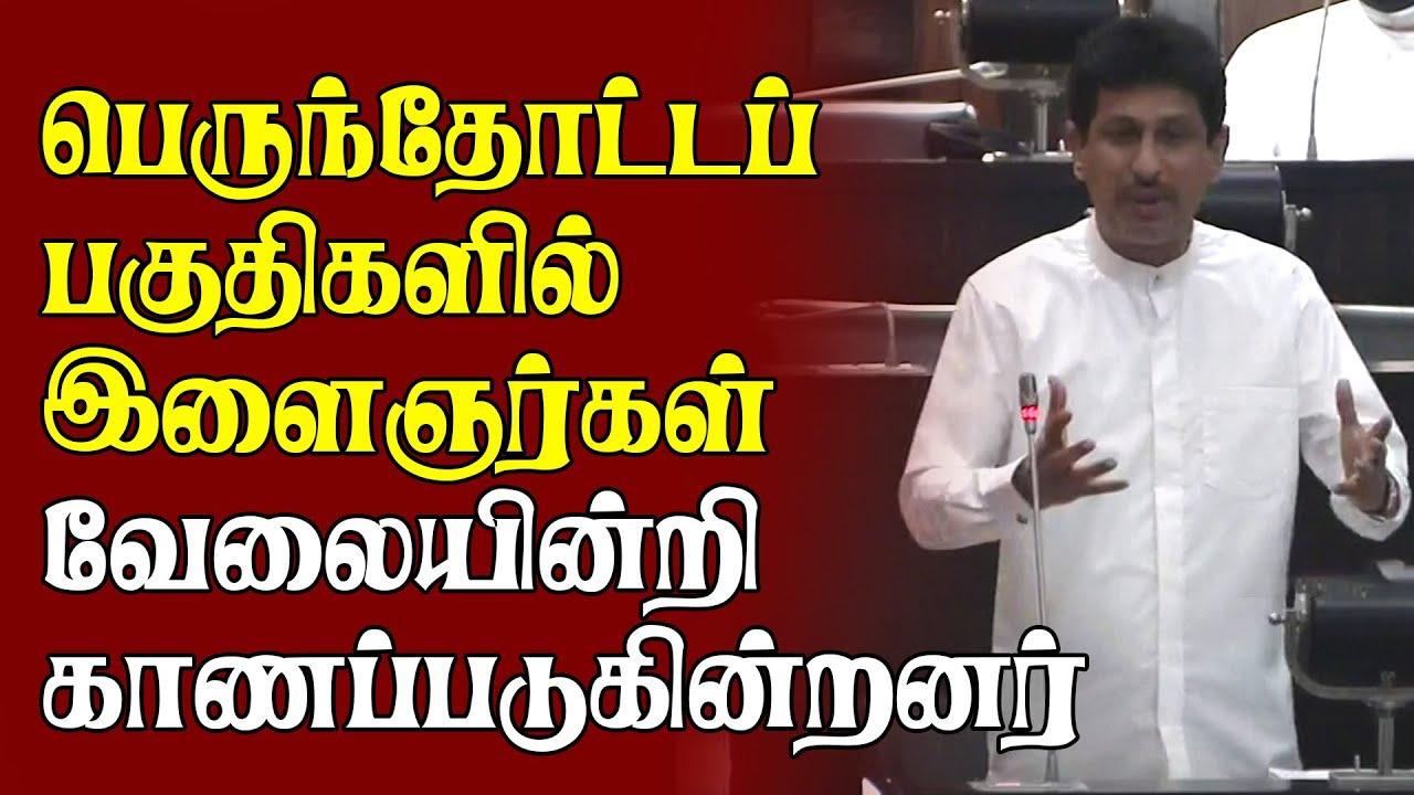 பெருந்தோட்டத்தில் ஆயிரக்கணக்கான இளைஞர்கள் வேலையின்றி காணப்படுகின்றனர் | Srilanka Parliament Speech