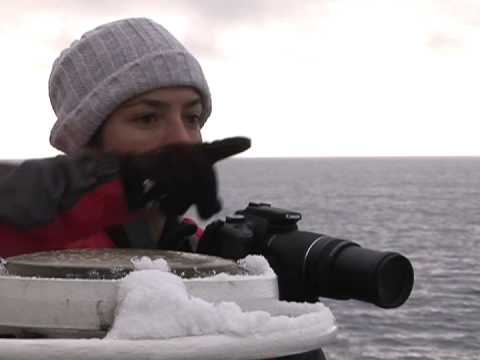 Report from the Southern Ocean
