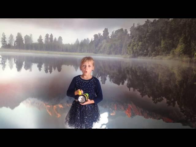 Изображение предпросмотра прочтения – АлинаЛяхова читает произведение «О да! Я — темный мотылек…» В.Я.Брюсова