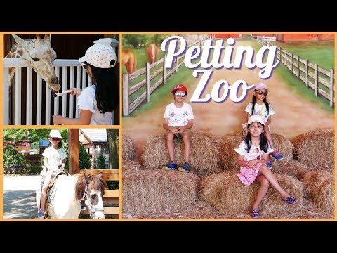 White Post Animal Farm and Petting Zoo in New York