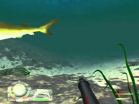 The Game -Shark Hunting The Great White-Career Mode-Level 1 - California Beach