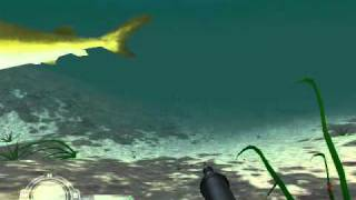 The Game -Shark Hunting the Great White-Career Mode-Level 1 - California Beach