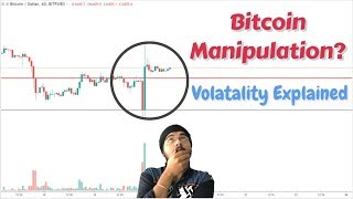 Did Bitcoin Manipulated? Volatility explained!!