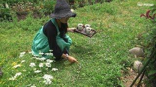 宮城県大崎市岩出山にある「手作りカントリー 魔女mamaの庭」さんの動画...
