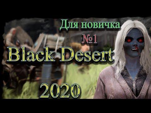 Гайд для новичка №1 в Black Desert 2020