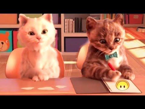 Little Kitten My Favorite Cat Pet Care Kids Game - Baby Learn Colors With Little Kitten Preschool