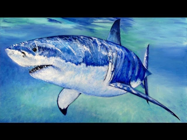 How to paint a Great White Shark Speed Painting