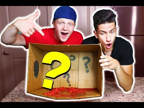 CRAZIEST WHAT'S IN THE BOX REAL LIFE CHALLENGE!