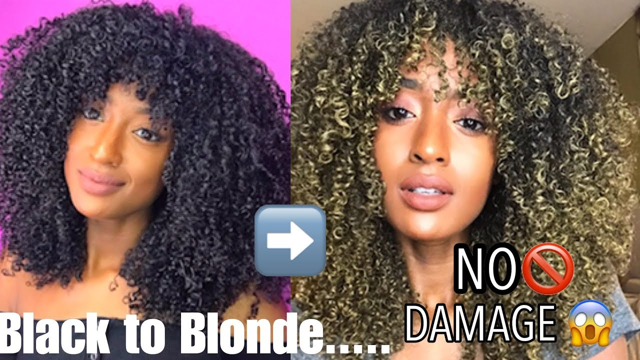 DYE Natural Curly Hair Blonde NO DAMAGE!!  @TiffanyLaibhen  TiffanyTV  YouTube