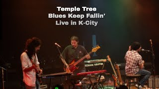 Blues Keep Fallin' (Live in K-City 17-10-2019)
