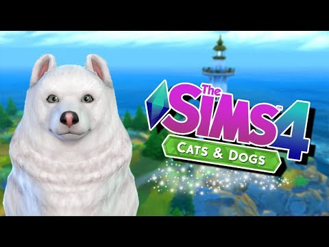 Let's Play The Sims 4 Cats & Dogs || Create A Pet Overview || 1st Impressions