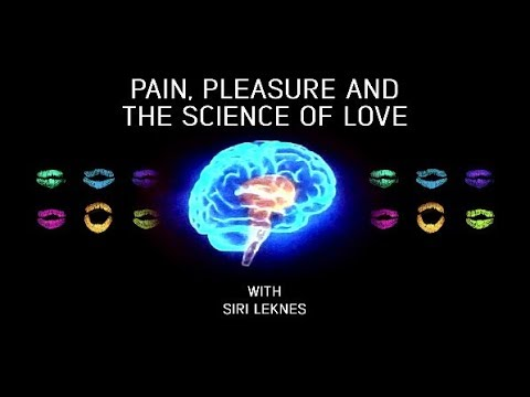Pain, pleasure and the science of love with Siri Leknes