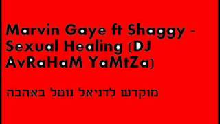 Marvin Gaye ft Shaggy - Sexual Healing (DJ AvRaHaM YaMtZa)