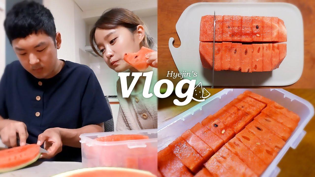 Vlog│여름맞이 충충이와 수박 소분하기 대격돌😤