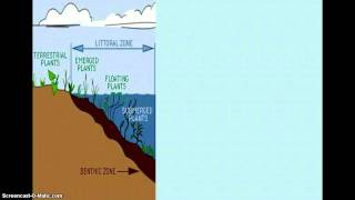 Unit 5 part 4 Fresh Water Biome AP Enviro