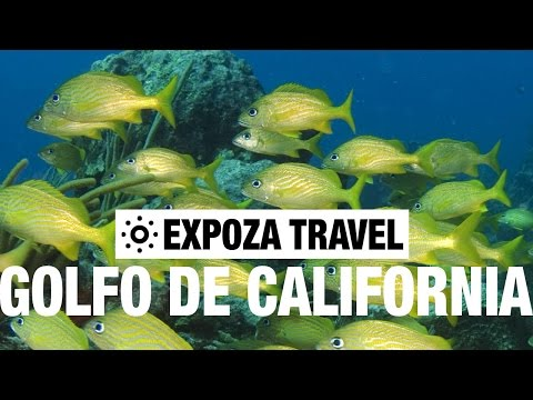 El Golfo de California Vacation Travel Video Guide