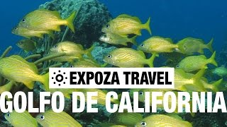 El Golfo de California Travel Video Guide