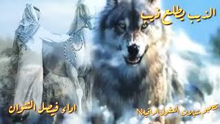شيله الذيب يطلع ذيب دامنه ولد ذيب // اداء فيصل الثنوان