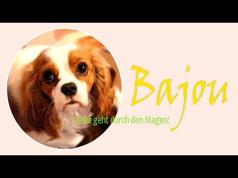 Hundefuttertest (Xantara) mit Hündin Bajou - Teil 2: Verbraucherfrage