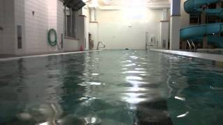 swimming with water weights
