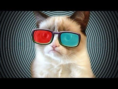 CAT MARIO EN 3D PORQUE YOLO!! - JuegaGerman