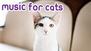 Cat Music Peaceful Music to Calm and Relax your Kitten!