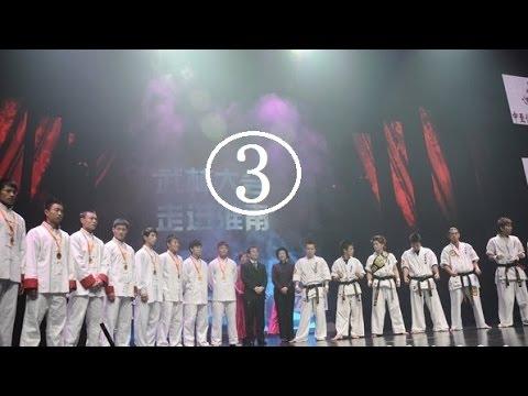 Chen Tai Chi vs. Karate combat 3/4---CCTV5 Wu Lin Da Hui(20120306)