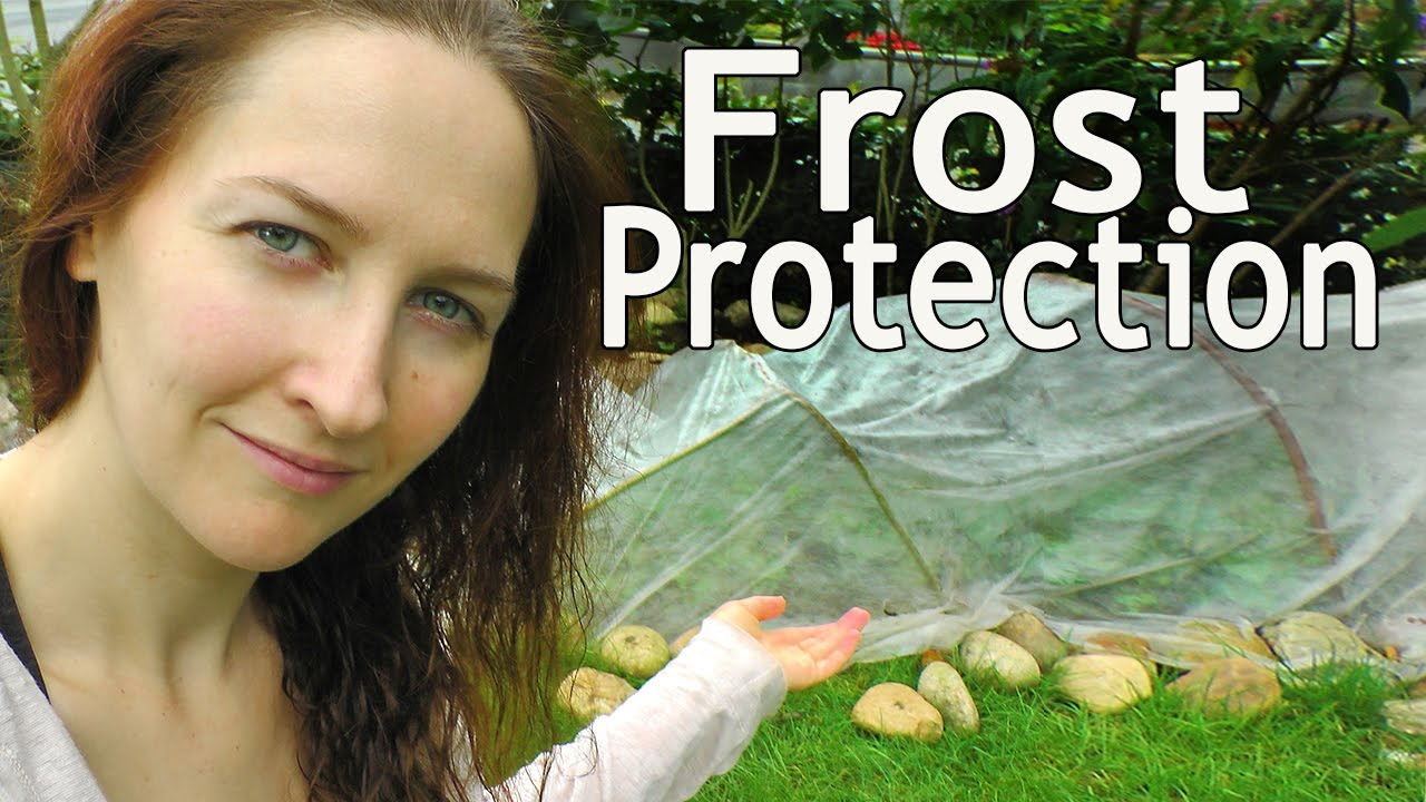 frost protection extending the growing season and winter garden
