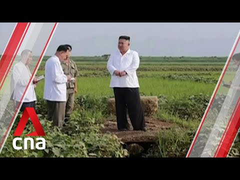 Observer on COVID-19 situation in North Korea, impact of Typhoon Bavi