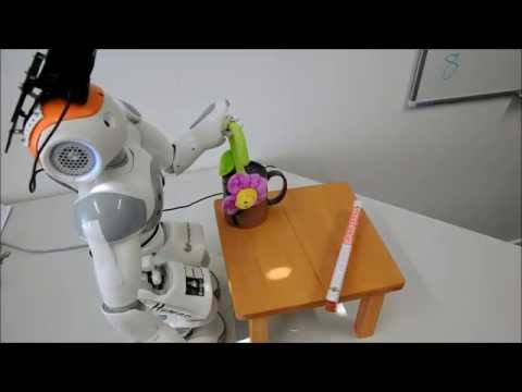 Exploring and Grasping Unknown Objects with NAO: Flower