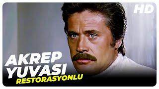 Akrep Yuvası- Türk Filmi (Restorasyonlu)