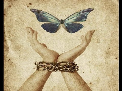 Fear or Freedom- Max Igan (Full)
