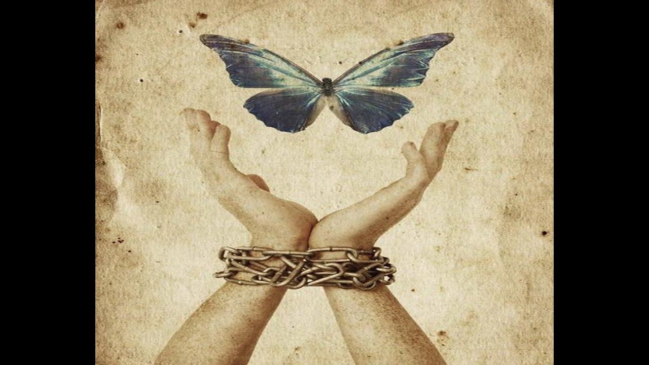 jail freedom ಗೆ ಚಿತ್ರದ ಫಲಿತಾಂಶ