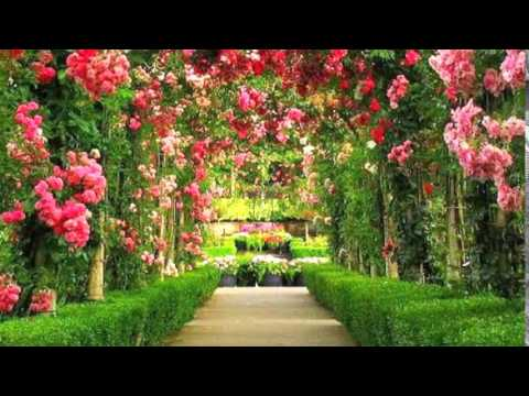 Wonderful Garden In The World YouTube