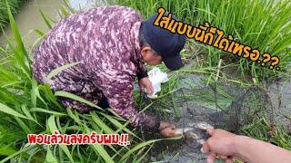 เลาะหาแนวกินแลงคือเก่า.??.วิธีใส่ลอบตามป่าหญ้าริมน้ำง่ายๆแต่ได้ผลแน่นอน.!!.100%