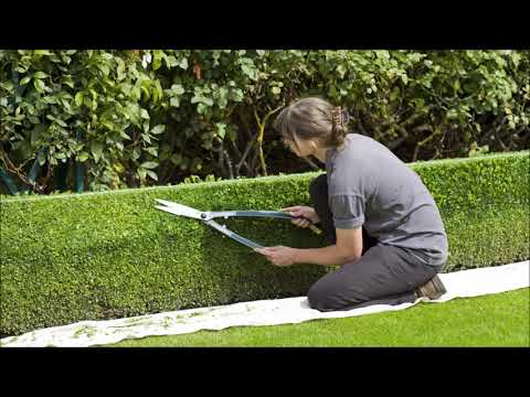 Best Lawn Service Landscaping Company  in Omaha NE Service-Omaha (402) 401 7562