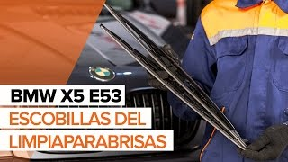 Reemplazar Plumas limpiaparabrisas BMW X5: manual de taller