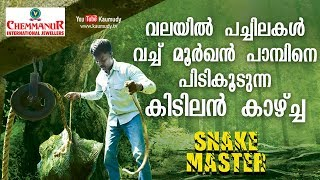 Vava Suresh traps Cobra in a net with leaves | Snakemaster | EP 375 | Kaumudy TV