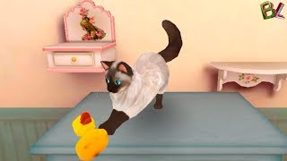 СИМУЛЯТОР КОШКИ Учим Детей Заботится О Домашних Животных Развлекательное Видео Для Детей