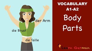 Learn German | German Vocabulary | die Körperteile | Body parts | der Körper | A1