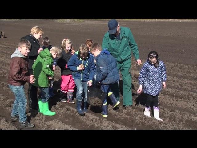 2016 09 29 Kartoffelprojekt